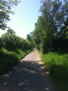 Bike Paths Surronding